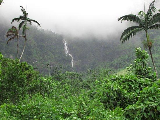 Koroyanitu National Heritage Park照片