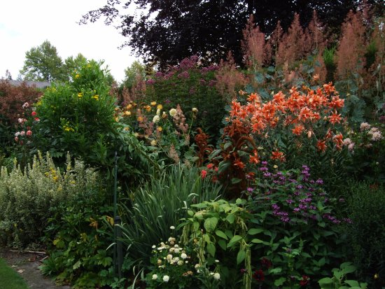 Ashburton, Nova Zelândia: Just a small patch of a wonderful garden