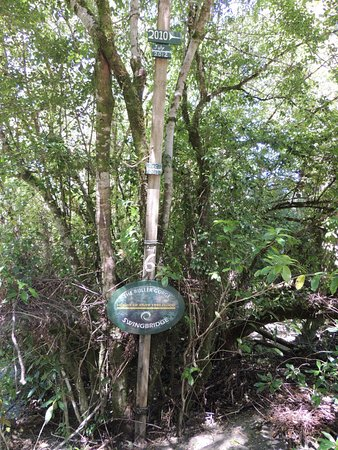 Nelson-Tasman Region, New Zealand: Flood level markers