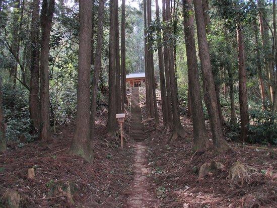 Ichihara Photo