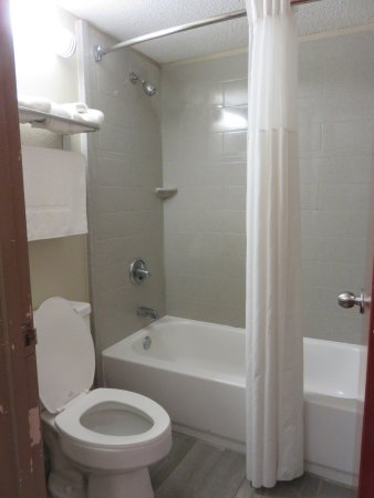 Natchitoches, LA: Toilet and shower are separate from sink and vanity area