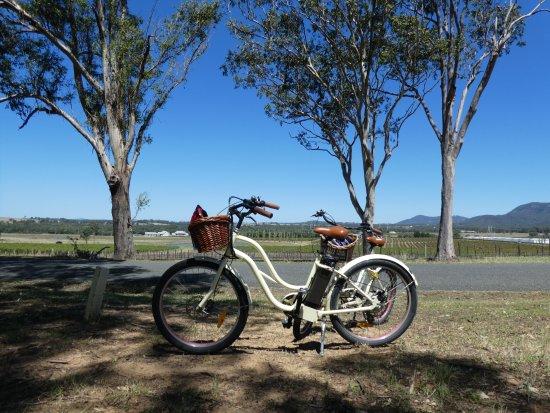 Pokolbin, Australien: Bikes parked as we enjoyed our picnic lunch