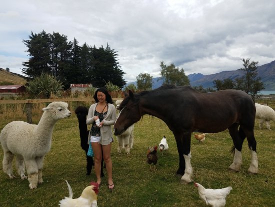 Glenorchy, New Zealand: Janice , Flo , and the bunch ! Cheers Rob and Therese