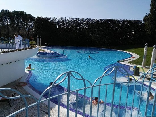 Parco d 39 ingresso bild von hotel mioni pezzato abano terme tripadvisor - Hotel mioni pezzato ingresso piscina ...