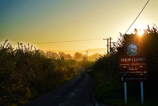 Axminster, UK: A gorgeous, frosty morning looking down the lane leading away from our Winery Shop