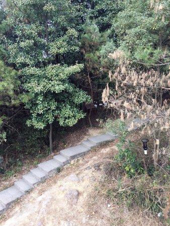 Fuzhou, China: photo1.jpg