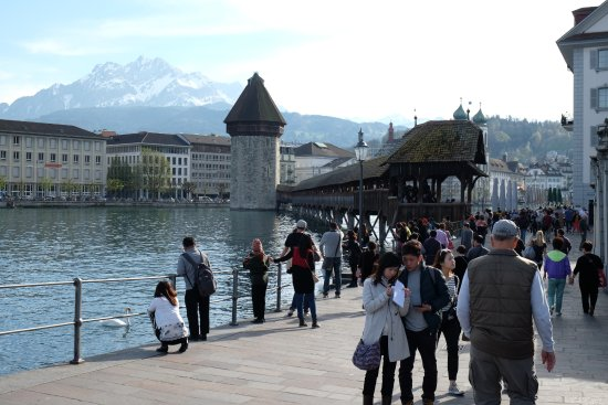Lake Lucerne Schifffahrtsgesellschaft : Busy most of the time