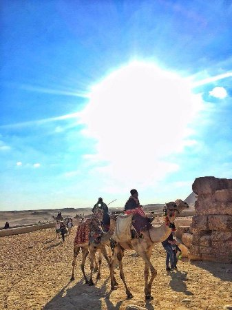 Moustafa Egypt Tours-Day Tours: the camel trip, really enjoyed..first time scary, but everything was great.