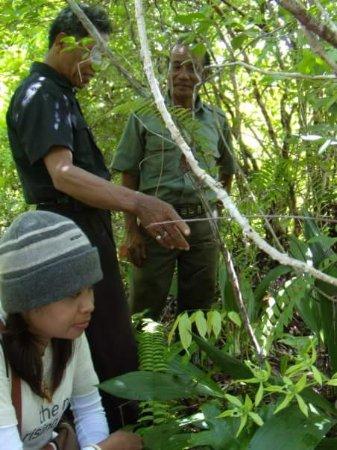 East Kalimantan, Indonesien: Penjelasan yg rinci
