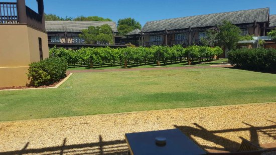 The Vines, Australia: View from room