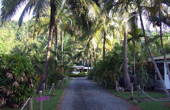 Cannonvale, Australia: coconuts corridor