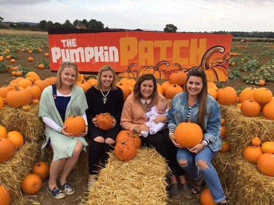 Basildon, UK: Plenty of photo opportunities at the pumpkin patch!