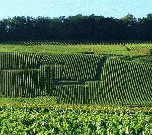 Le Mesnil-sur-Oger, Frankrike: getlstd_property_photo
