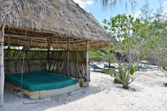 Chumbe Island Coral Park Image