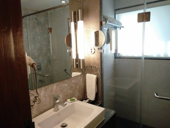 Ramada Ahmedabad: Small Bathroom