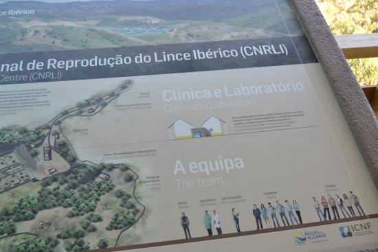 Sao Bartolomeu de Messines, Portugal: Reserva do Lince Ibérico - Observatório