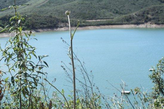 Sao Bartolomeu de Messines, Portugal: Caminhadas Paisagem Natural