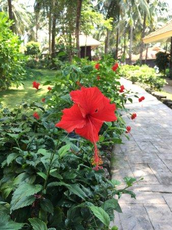 Saigon Phu Quoc Resort: photo2.jpg