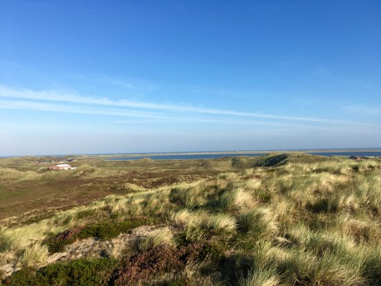 A-ROSA Sylt: Den smukke natur på Sylt