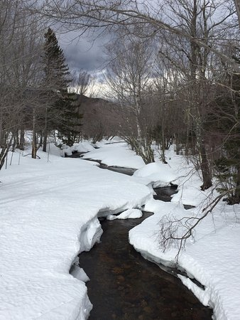 Gorham, NH: Along the trail 2