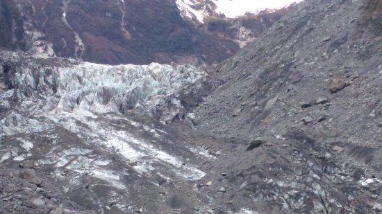 Fox Glacier Hiking Trails: Vista del glaciar