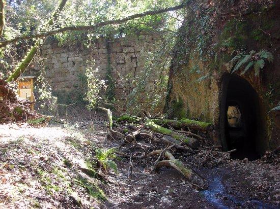 Corchiano, Ιταλία: Popolo Falisco - Ponte del Ponte, diga-acquedotto, III-II sec. a.C.