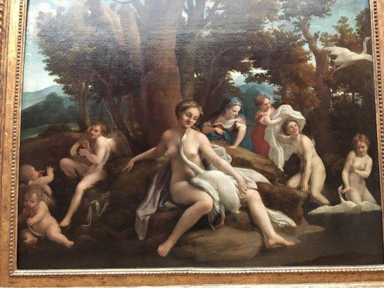 Gemäldegalerie: Correggio - Leda e il cigno