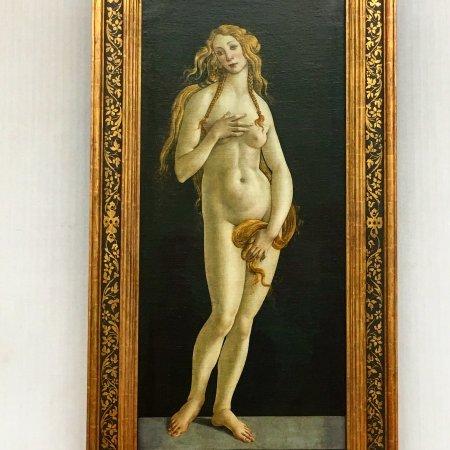 Gemäldegalerie: Botticelli - Venere nuda
