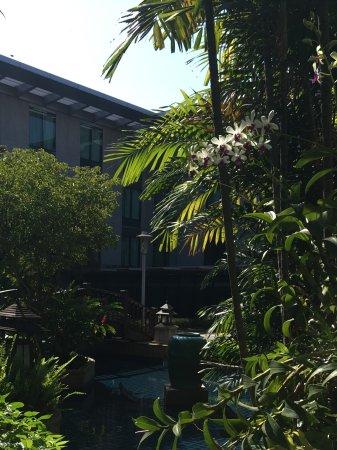 Bang Phli Resmi