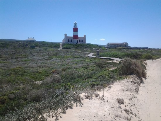 Cape Agulhas, Sudáfrica: Taken on the way to the tip of Africa