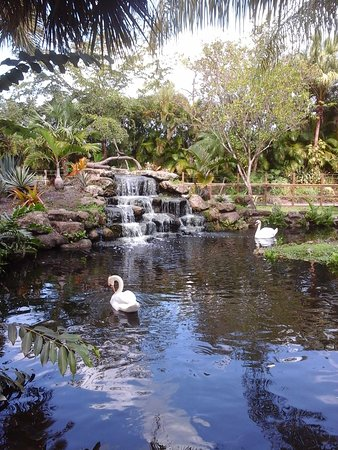 Loxahatchee, ฟลอริด้า: botanical gardens