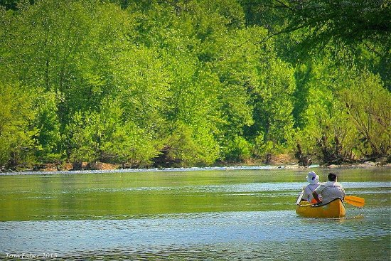 Saint Joe, AR: Floating on the Buffalo River is an outstanding way to see the Ozarks.