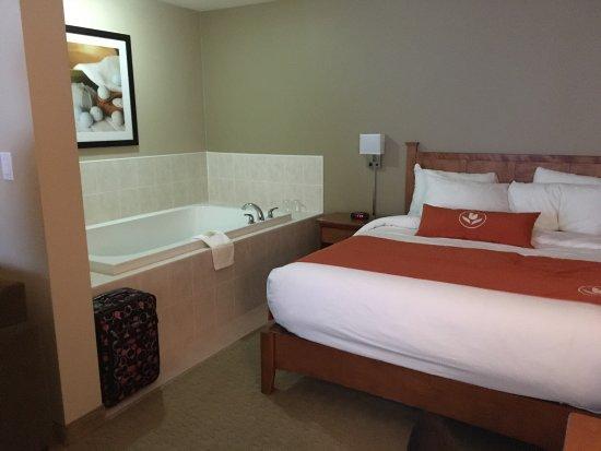 Quality Inn & Suites Amsterdam : photo1.jpg