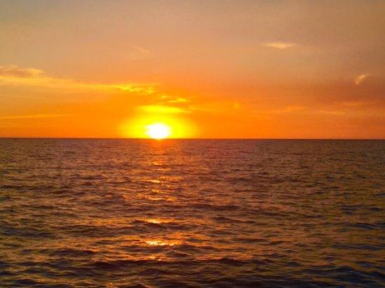 Estero Bay Express Dolphin & Sunset Boat Tours: Sunset on Estero Bay