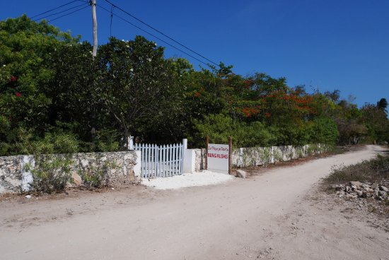 La Papaye Verte: The place to be!
