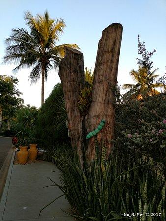 Thermas Park Resort & Spa: Decoração externa em parte de tronco de árvore