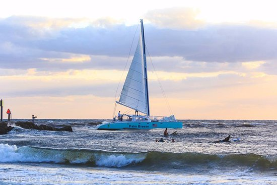Palm Breeze Charters: Palm Breeze Surf Sailing out Boca Inlet