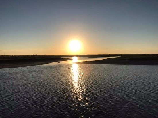 Capt Duke's Airboat Rides: Beautiful sunset out on the St. Johns River
