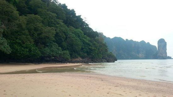 Monkey Trail: Centara Grand Resort private Beach