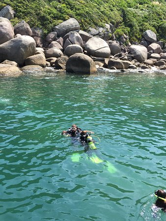 Água Viva Mergulho: Ilha do arvoredo, natureza preservada e paradisíaca,instrutores comprometidos com a preservação.