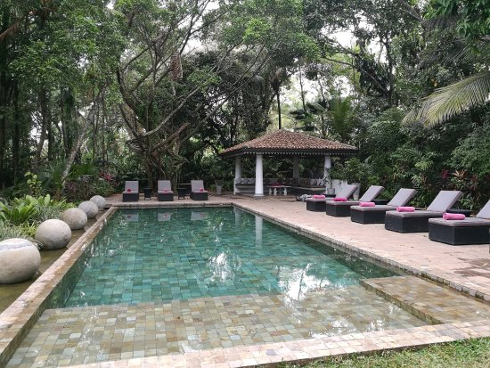 The Wallawwa: Secluded pool just a stride away from the gardens and restaurant