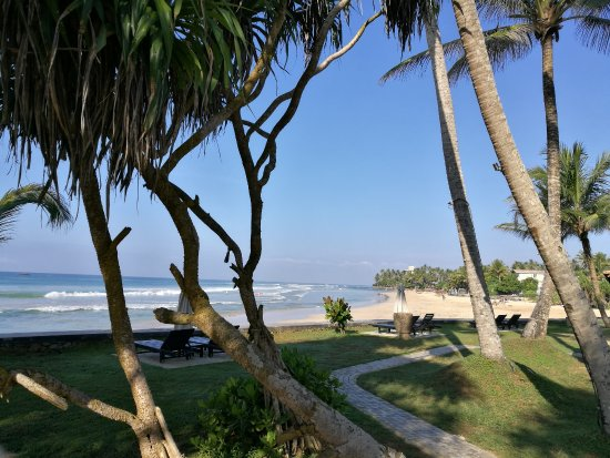 Ahangama, Sri Lanka: What should we do today?