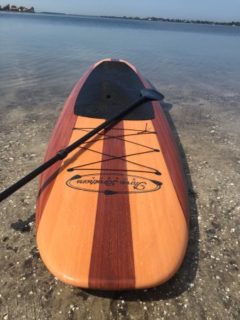 Palmetto, FL: Paddle Board Tours