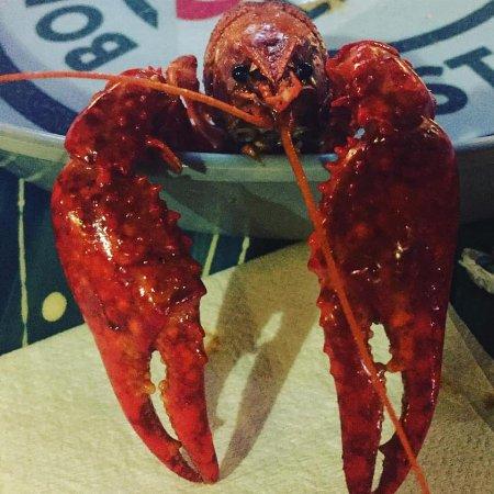 Ocean Springs, MS: Good fresh crawfish!!