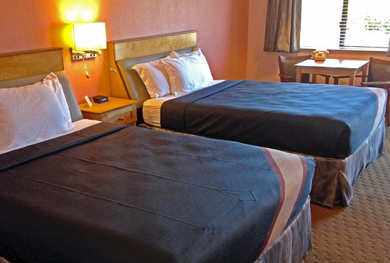 Seabird Lodge - a Signature Inn: Two Queen Beds