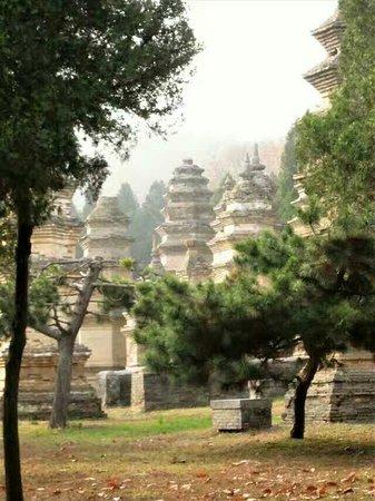 Dengfeng, Kina: Мечты сбываются!  Я побывала в Шаолине.  Хотя многие из сооружений новодел , однако это место пр