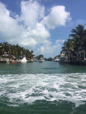 Tavernier, Φλόριντα: photo4.jpg