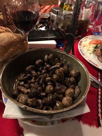 Ruse, Bulgaria: μανιταρια σαχανακι