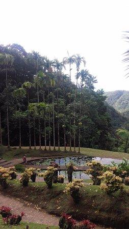 Jardin de Balata 사진