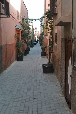 Riad Cherrata: Beautiful quiet street!
